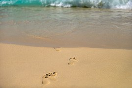 huella mar